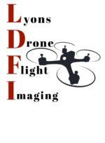 LDFI LLC